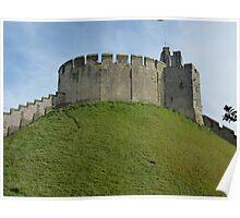 Arundel castle grounds Poster