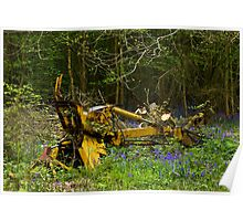 Woodland and Machine Poster