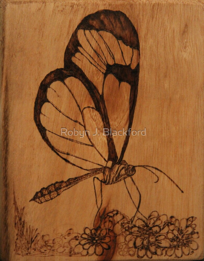 Pyrography: Glasswing Butterfly by aussiebushstick