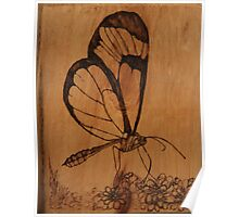 Pyrography: Glasswing Butterfly Poster