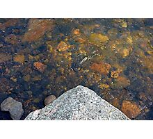 Stone Dipped in Big Thompson River  Photographic Print