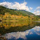 Deer Lake by Jean Poulton