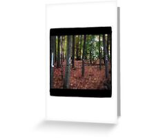 Love Trees Greeting Card