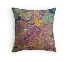 COMPETITION CORAL Throw Pillow