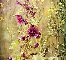 Flowers by Stefanie Köppler