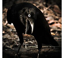 all that has a deathly smack he prefers - Happy Halloween Photographic Print
