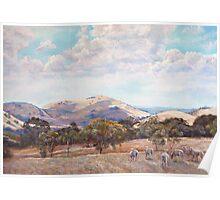 Strathbogie Summer Landscape  Poster