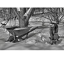 Waverly Farm Winter Idled Photographic Print