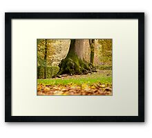 Autumn in Parma Framed Print