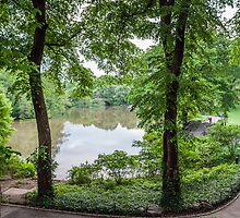 Central Park Serenity Now by Ray Warren