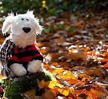 Arthur in Autumn by twinnieE