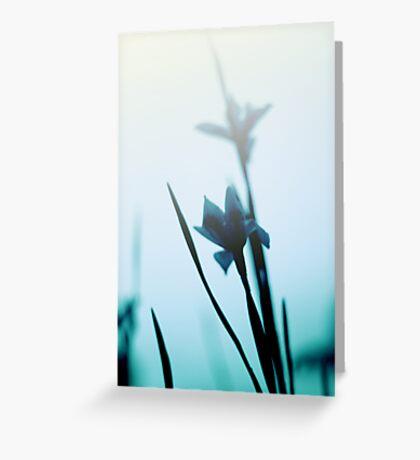 Blue haze Greeting Card