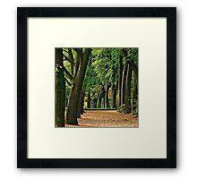 The Stand.... Framed Print