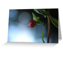 red little fruit Greeting Card