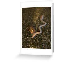 Slug Eating Earthworm Greeting Card