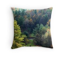 Walking In Wild Places Throw Pillow
