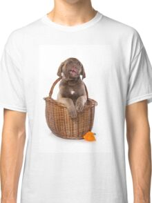 Funny brown puppy retriever Classic T-Shirt