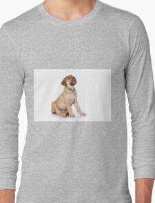 Funny brown puppy retriever Long Sleeve T-Shirt
