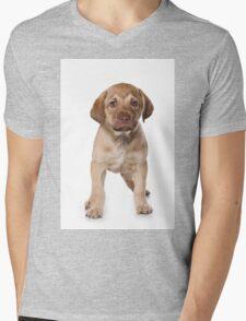 Funny brown puppy retriever Mens V-Neck T-Shirt