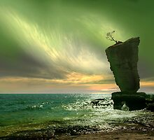 Flowerpot Island by Igor Zenin