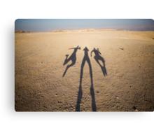 flying shadows Canvas Print