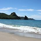 Great Barrier Island Beach - New Zealand by Nicola Barnard