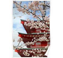 Cherry Blossom Season Poster