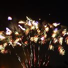 Fireworks by Aoife McNulty