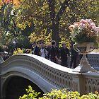 Central Park Bridge, Autumn Colors, New York City by lenspiro