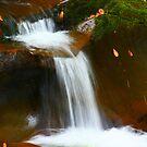 AUTUMN, LITTLE RIVER by Chuck Wickham