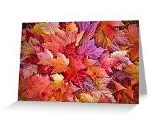 Leaf Boquet Greeting Card