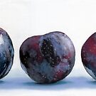 Three Plums painting by ria hills
