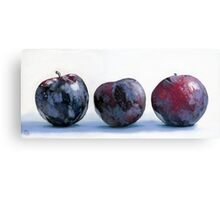 Three Plums painting Canvas Print