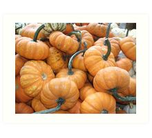 More pumpkins for sale! Art Print
