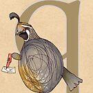 Q is for QUAIL by busymockingbird