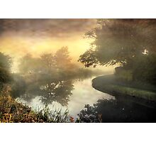 Trees in the mist . Photographic Print