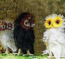Fluffy Owls On A Shelf by Jane Neill-Hancock
