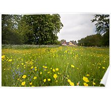Summer meadow Poster