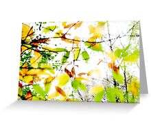 Leaves Splash Abstract 1 Greeting Card