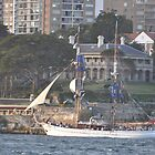 Australia Day 2013 - Tall Ship & Kirribilli House by muz2142