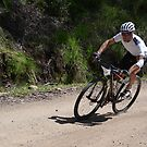 Mitta to Mount Beauty 2013 by Pete Simpson