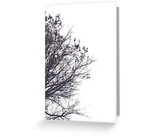 Skeleton Sky Greeting Card
