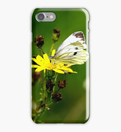 Mutual Attraction iPhone Case/Skin