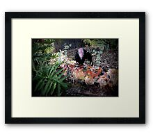 Fright Night Feast For the Eyes Framed Print