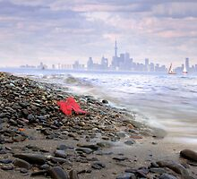 Toronto Waterfront by Igor Zenin