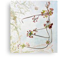 Hanging Cherry Bough Canvas Print