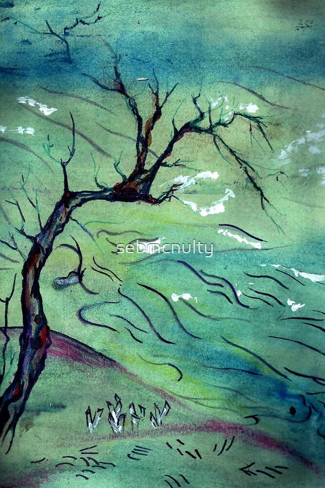 Blossom Tree & the river by sebmcnulty