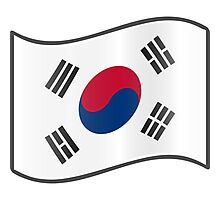 Korean Flag Photographic Print