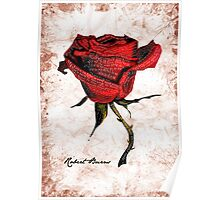 My love is like a red, red rose Poster