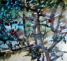 The apple tree at daytime by May Hege  Rygel